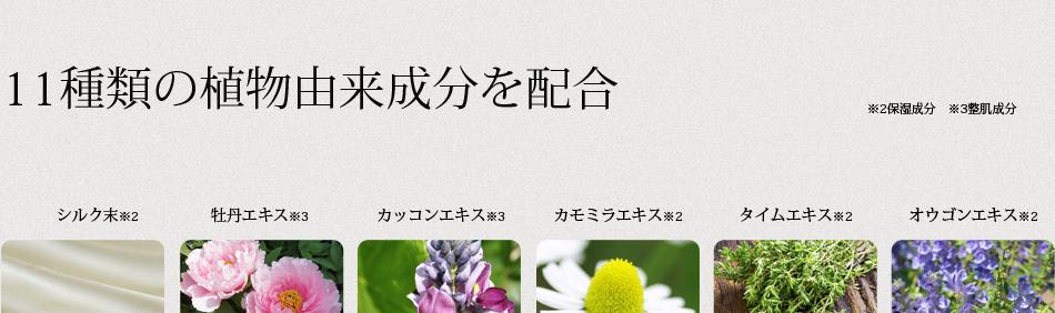 11種類の植物成分